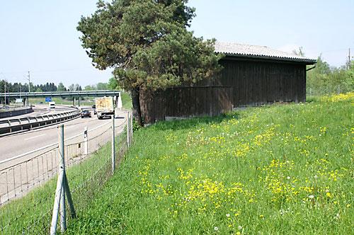 Rundgang Bunker an der Autobahn